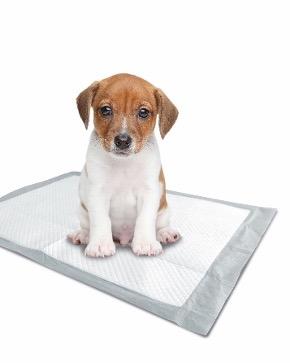 puppy-pads