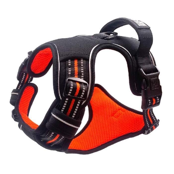 mpets_0025_hiking-harness-side