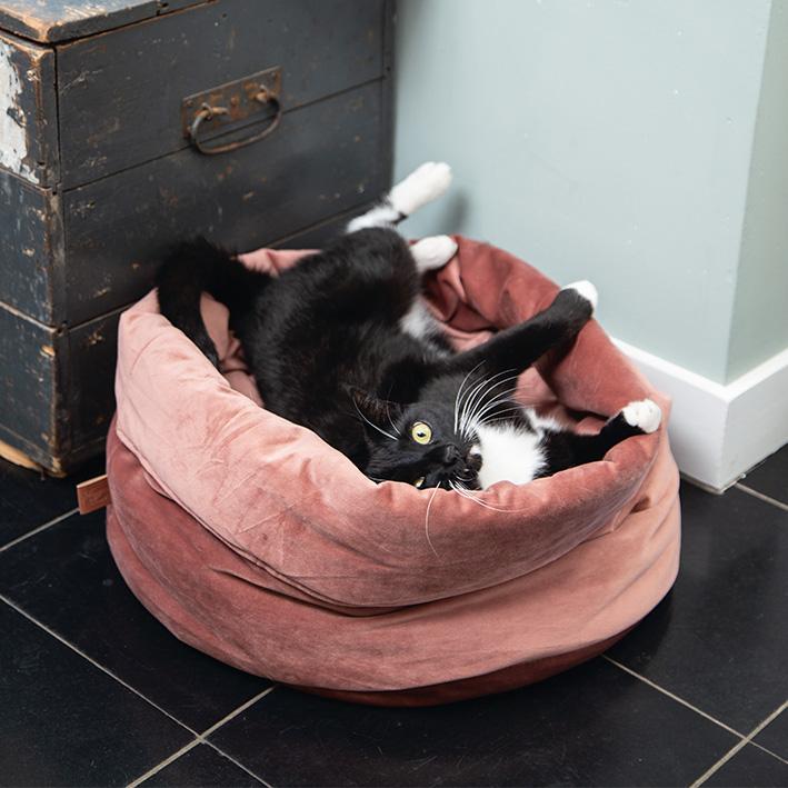 valemount-beeztees_flucco-cat-basket-pink