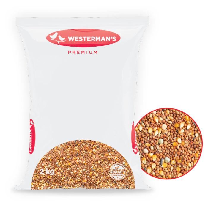 westermans_0000_pigeon-roller-fancy